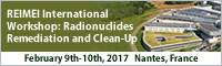 REIMEI International Workshop: Radionuclides Remediation and Clean-Up